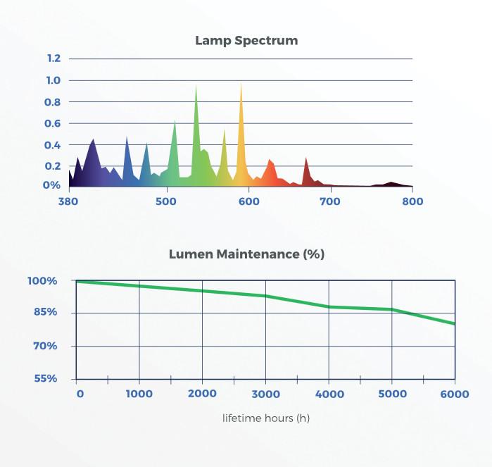 DLI 1000w MH tech Specs