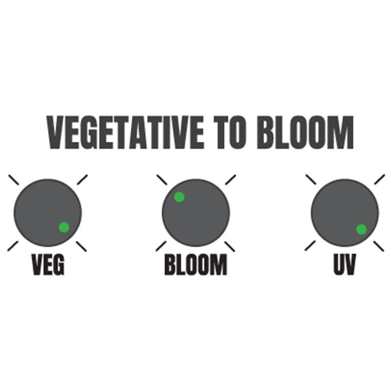 Hellion VS3 LED suggested vegetation to bloom settings