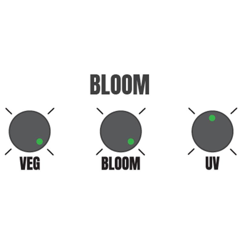 Hellion VS3 LED suggested bloom settings