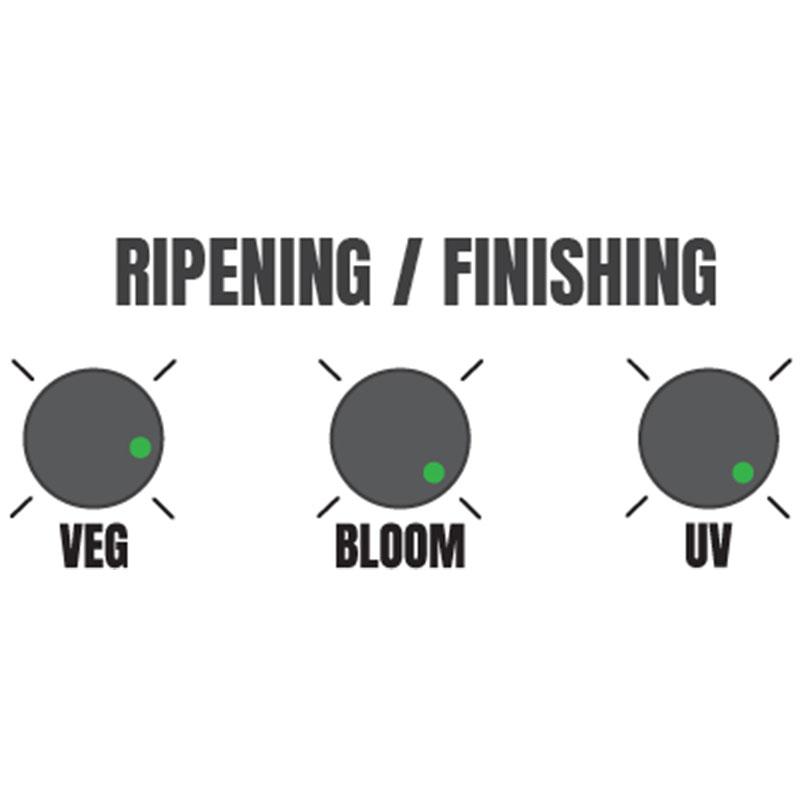 Hellion VS3 LED suggested ripening/finishing settings