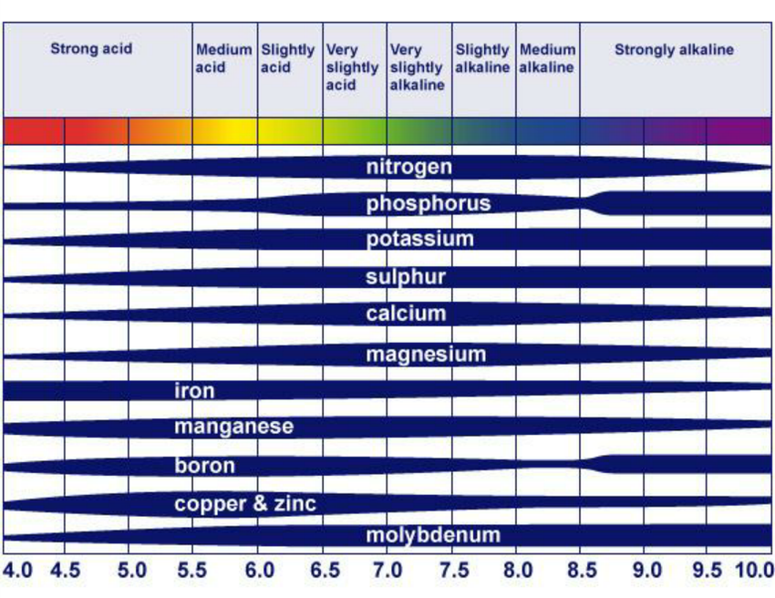 effect of pH on nutrient availability